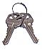 81057-001 SET OF 2 CUT KEYS - 5 PIN